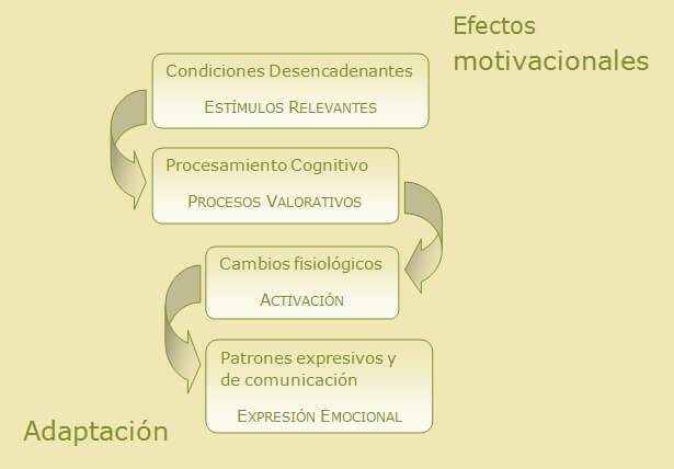 Proceso emocional en la psicología tradicional