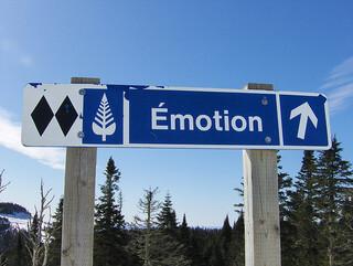 De camino a la emoción